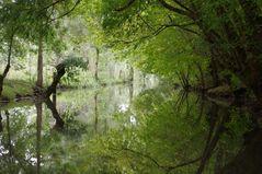 Promenade dans le marais poitevin ....