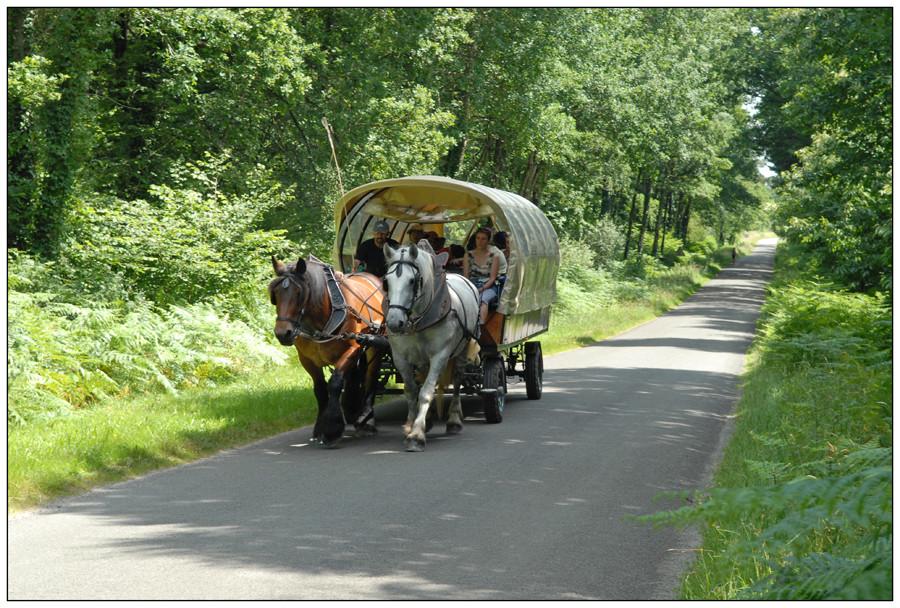 Promenade en Mayenne