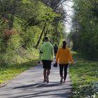Promenade sur la voie verte
