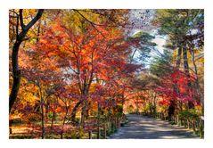 Promenade to Autumn