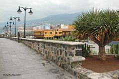 Promenadenweg mit Bergkulisse in Puerto de la Cruz