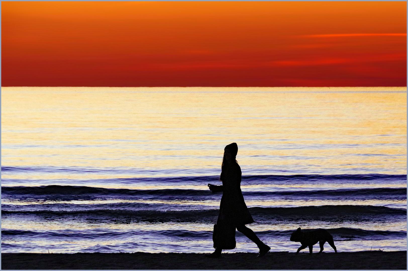 promener son chien ......au couchant