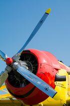 Propeller und Motor