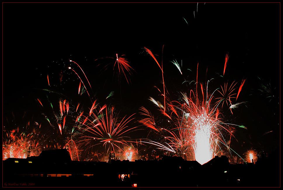 Prosit Neujahr fürs Dromedar!