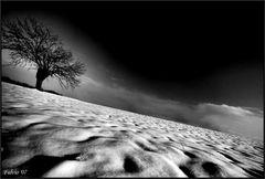 Prospettiva neve