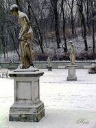 prospettive di neve