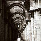 Prospettive di un'abbazia - Navata destra dell'Abbazia di San Galgano