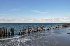 Protection de la plage et des dunes.