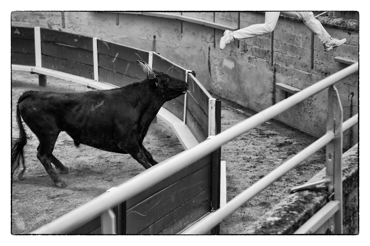 Provence  8 Stierkampf