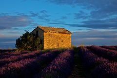 Provence frühmorgens 6:24 Uhr