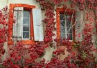 Provence im Herbst 1