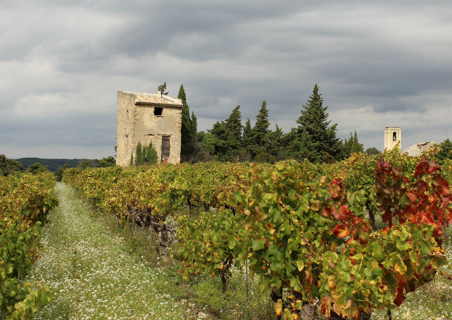 Provence im Herbst 3