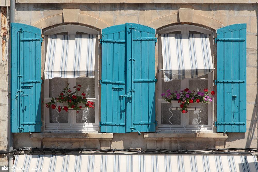 Provence V