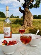 Provence zum ausspannen