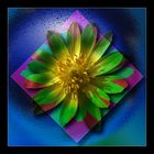 psychedelic-flower-power