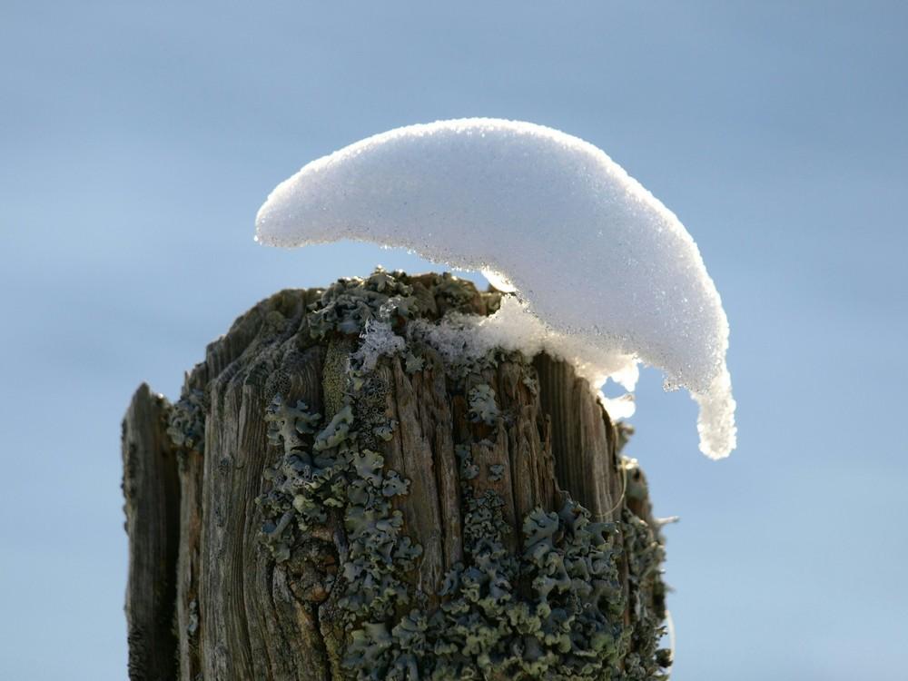 ptit chapeau de neige