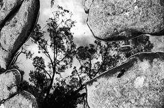 """""""Puddle"""" - inspiriert von M. C. Escher"""