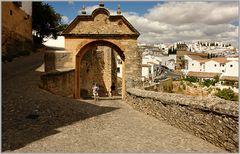 Puerta de Felipe V...