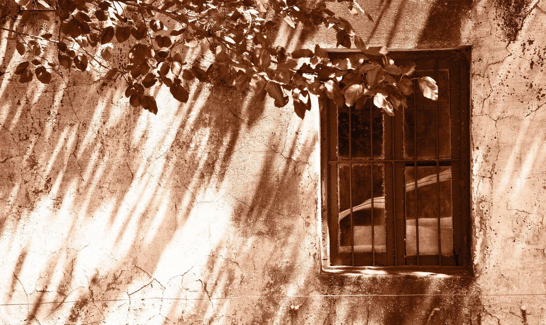 Puertas y ventanas. LXXXI.