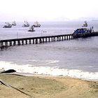 puerto real de chimbote