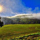 Puesta de sol con niebla