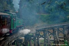 Puffing Billy Railway