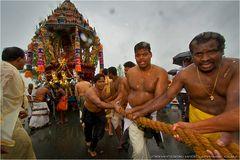Pulling Sri Kamadshi