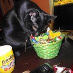 Puma wünscht allen ein schönes Osterfest