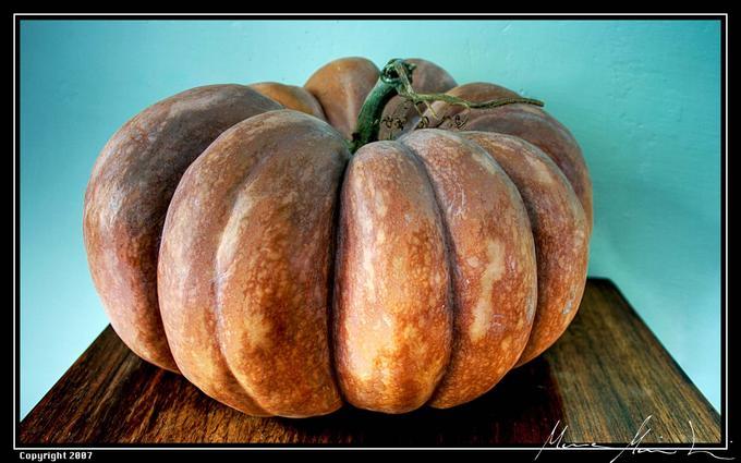 Pumpkin (4,5%)