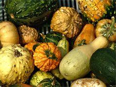 Pumpkin World
