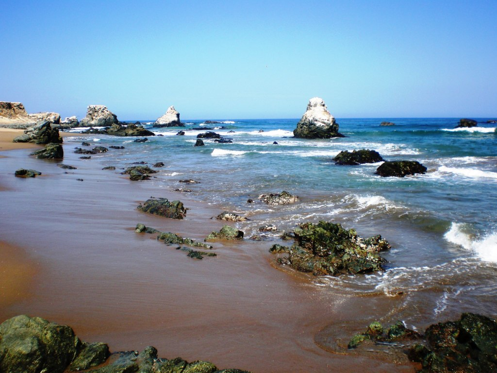 Punta Lomitas