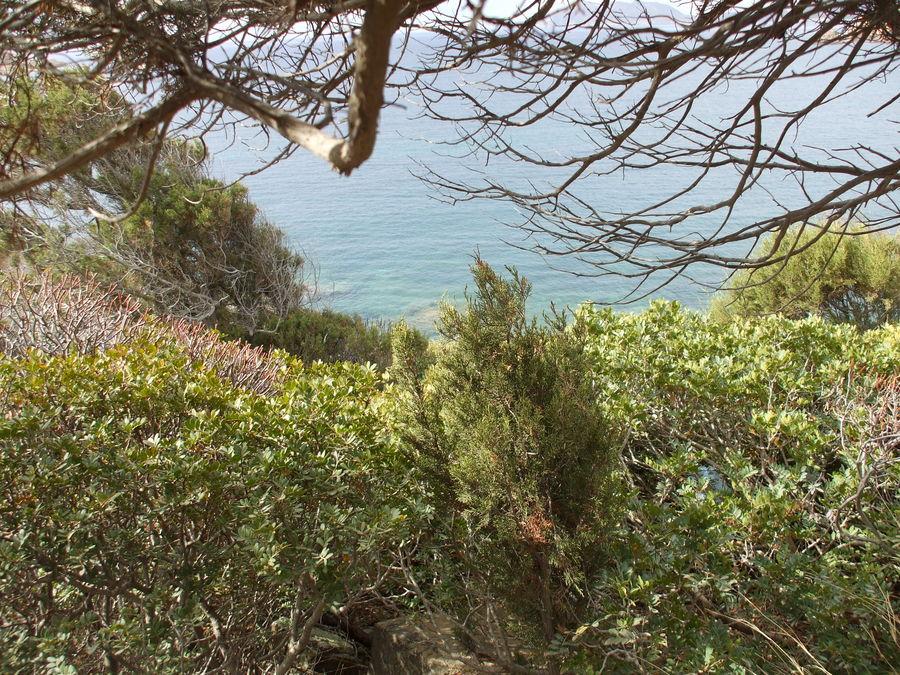 Punta niedda -Teulada