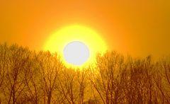 Pure Abendsonne