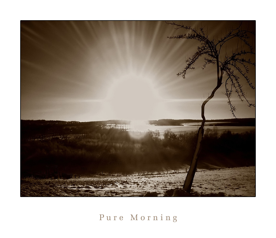 Pure Morning