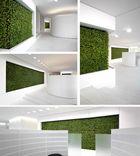 Purismus in Grün und Weiß - Grüne Wand von art aqua bei der Raiffeisenbank Chur