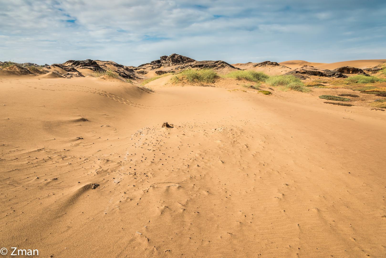 Purity Of The Desert 03
