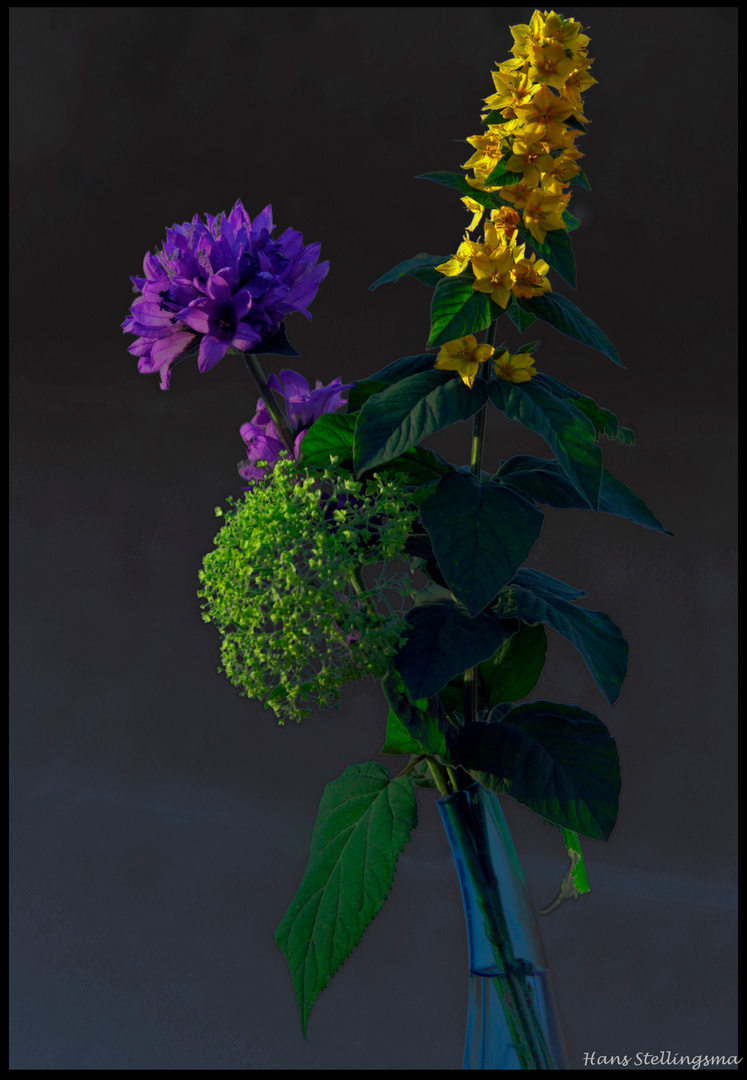 purple yellow and green