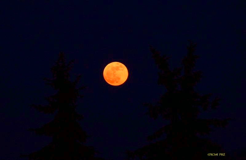 Purpur-Mond