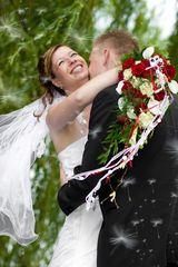 Pusteblumen bei einer Hochzeit im Juli