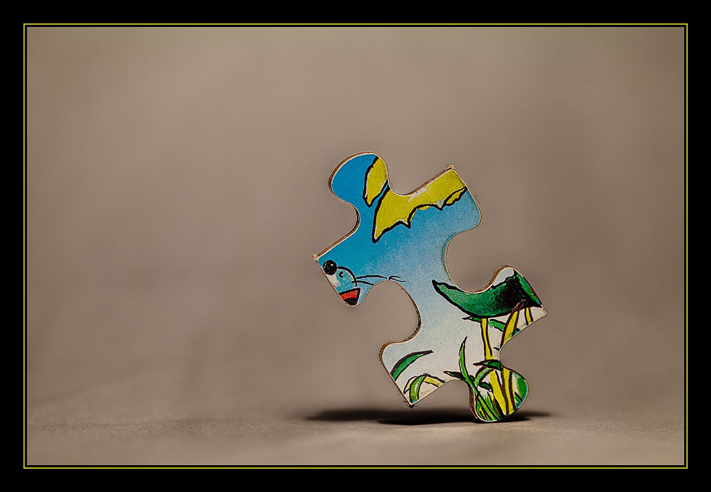Puzzledancer