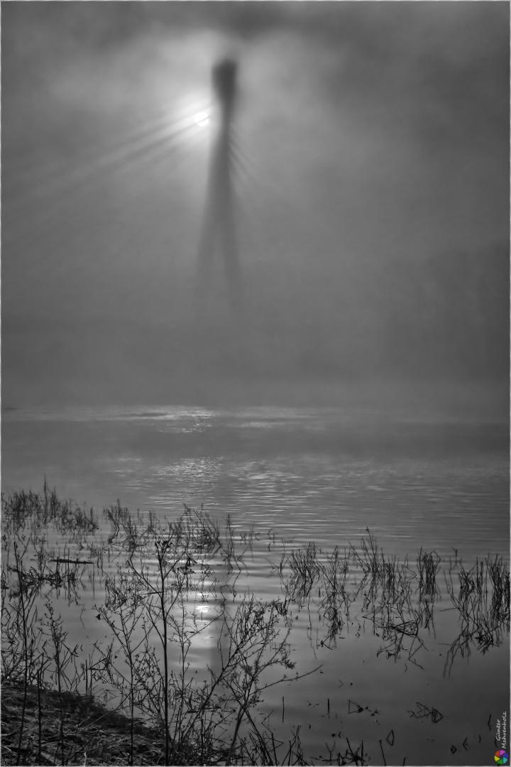 Pylon im Nebel (2)