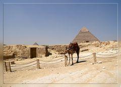 Pyramidenidylle