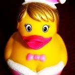 Qietsche Ente ...gesehen woanders und für witzig befunden