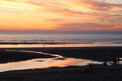Quand la côte d'Opale devient rose.....