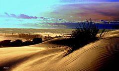Quand la plage est vide