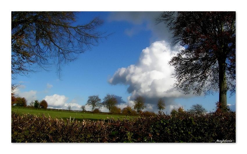 Quand les nuages jouent avec les arbres