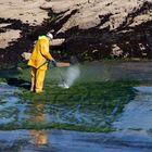 Quand un breton lave la mer