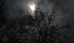 Quanti pensieri ......luce .....buio....