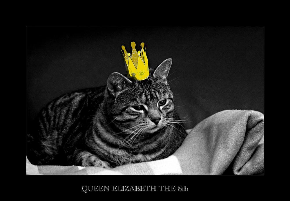 Queen Elizabeth the 8th