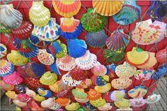 ..Quelques coquilles bien colorées, près du port de pêche de Dieppe..
